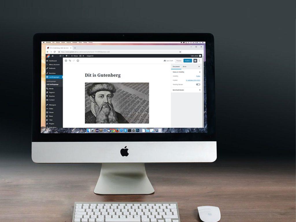 Gutenberg visuele wordpress editor