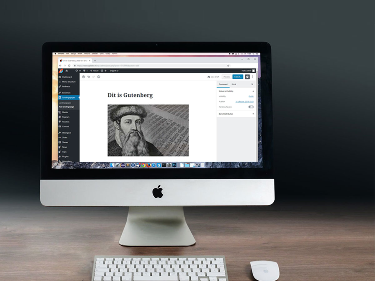 Gutenberg visuele wordpress editor