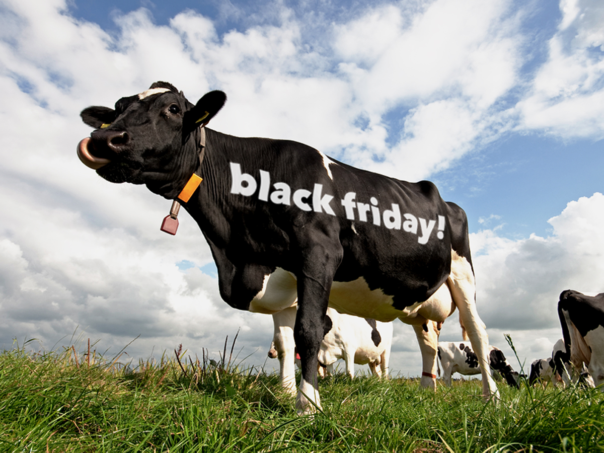 black friday voor webshops