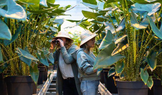 Planthunters